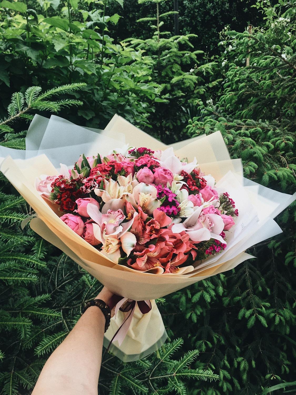 Живые цветы доставка в севастополе купить, растение